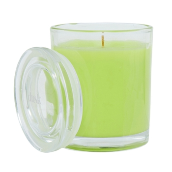 Lemongrass Zest 1 Wick Scented Candle